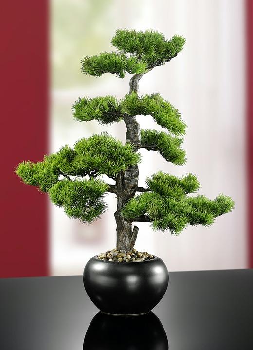 dekorativer kiefer bonsai kunst textilpflanzen bader. Black Bedroom Furniture Sets. Home Design Ideas